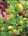 Gooseberries in May