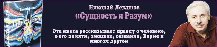 Сущность и Разум - Николай Левашов